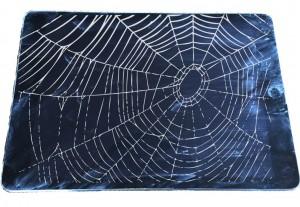 iPad-with-Spiderweb